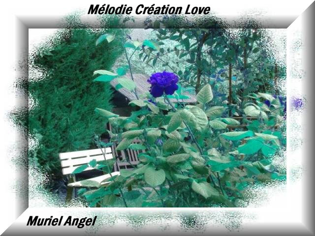 creation-dream-fleur-poetique-110-melodie-creation-love