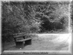 canal-de-lourq-2012-10.jpg-copiry-phot-creat-melo-300x225 dans Photos Créations
