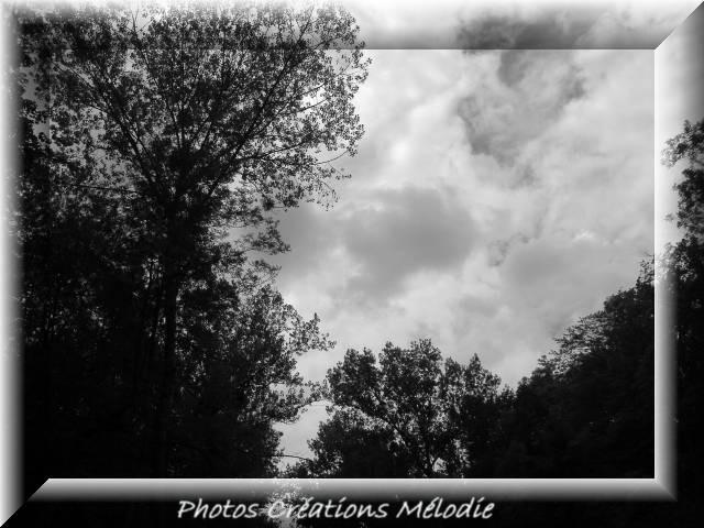 canal-de-lourq-2012-109.jpg-copiry-phot-creat-melo