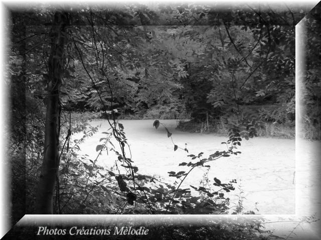 canal-de-lourq-2012-120.jpg-copiry-phot-creat-melo