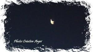 copiry-photos-creations-angel-16-300x168