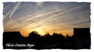 copiry-photos-creations-angel-21-300x168