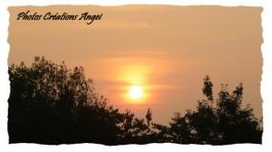 copiry-photos-creations-angel-24-300x168 dans Photos Créations