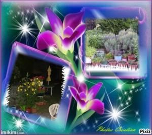 Créations Pixiz Jardin 2013 (4) Photos création