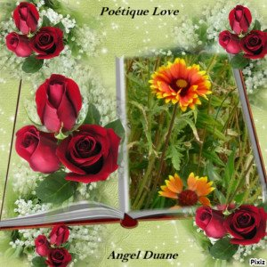 copirythe poétique love Angel Duane (73)