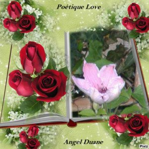copirythe poétique love Angel Duane (74)
