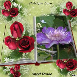 copirythe poétique love Angel Duane (75)